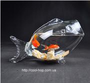 Аквариум рыбка,  оригинальный подарок,  необычный,  оригинальный аквариум