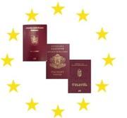 Гражданство Венгрии,  Румынии