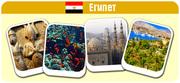 Туры в Египет осенью. Дешево. Цены на отели в сентябре. в Черновцах